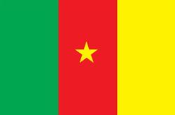 flagge_kamerun