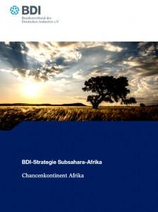 bdi_afrikastrategie